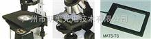 揚州市 進口顯微鏡熱臺 顯微鏡熱臺