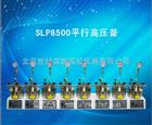 SLP8500平行高压釜