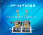 SLP225多功能反应釜