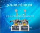 SLP210多位平行反应釜