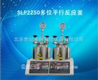 SLP2250多位平行反应釜