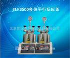 SLP2500多位平行反应釜