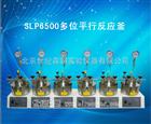 SLP6500多位平行反应釜