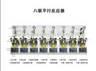 100ML八联平行反应器