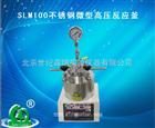 SLM100不锈钢微型高压反应釜