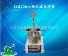 SLM100水热合成反应釜