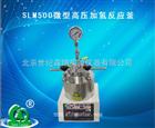 SLM500微型高压加氢反应釜