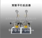 100ML双联平行反应器