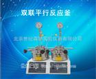 500ML双联平行反应器