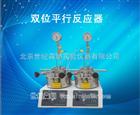 250ML双位平行反应器