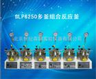 SLP6250多釜组合反应釜