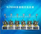 SLP6500多釜组合反应釜