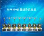 SLP8250多釜组合反应釜