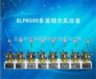 SLP8500多釜组合反应釜