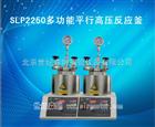 SLP2250多功能平行高压反应釜