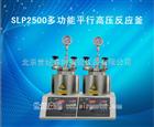 SLP2500多功能平行高压反应釜