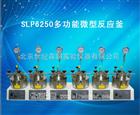 SLP6250多功能微型反应釜