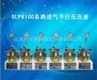 SLP6100多路进气平行反应釜