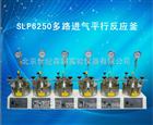 SLP6250多路进气平行反应釜