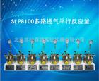 SLP8100多路进气平行反应釜