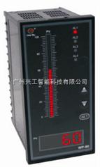 WP-T803-01-12-HL-P数显表