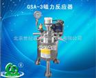 GSA-3磁力反应器