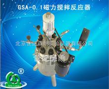 GSA-0.1磁力搅拌反应器