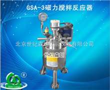 GSA-3磁力搅拌反应器