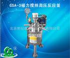 GSA-3磁力搅拌高压反应釜