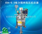 GSA-0.5磁力搅拌高压反应器