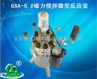 GSA-0.2磁力搅拌微型反应釜