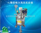 1L微型磁力高压反应釜