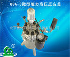 GSA-3微型磁力高压反应釜