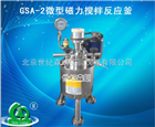 GSA-2微型磁力搅拌反应釜