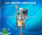 GSA-5微型磁力搅拌反应釜