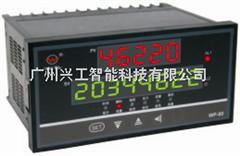 WP-L801-00-A-HN-P-W流量积算仪