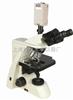 生物显微镜XSP-10CE|生物显微镜价格|上海生物显微镜厂家-绘统光学