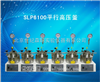 SLP6100平行高压釜