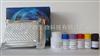 小鼠α甘露糖苷酶(αManase)ELISA试剂盒