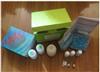 裸鼠克拉拉细胞蛋白 ELISA试剂盒