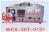 WCK智能型温度程序控制箱