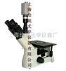 倒置金相显微镜6XA-C|金相显微镜价格-绘统光学厂