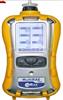 美国华瑞(RAE) PGM-62X8MultiRAE 2 六合一有毒有害气体检测仪