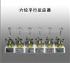 10ML六位平行反应器