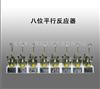 10ML八位平行反应器
