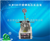 SLM100不锈钢高压反应釜