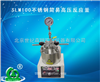 SLM100不锈钢简易高压反应釜