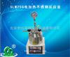 SLM250电加热不锈钢反应釜