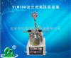 SLM100法兰式高压反应釜
