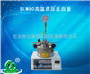 SLM50高温高压反应釜